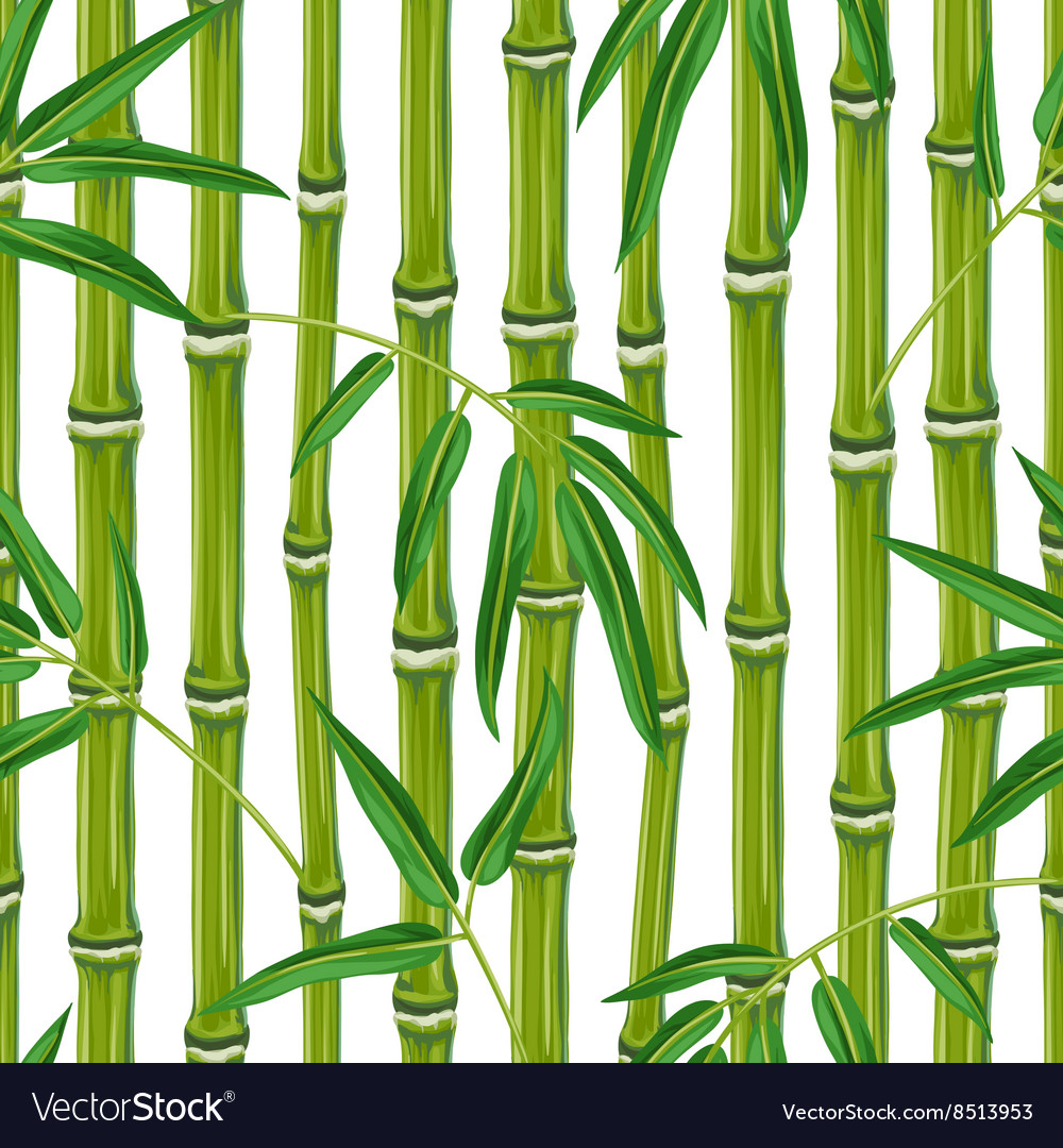 seamless pattern with bamboo plants and leaves vector image