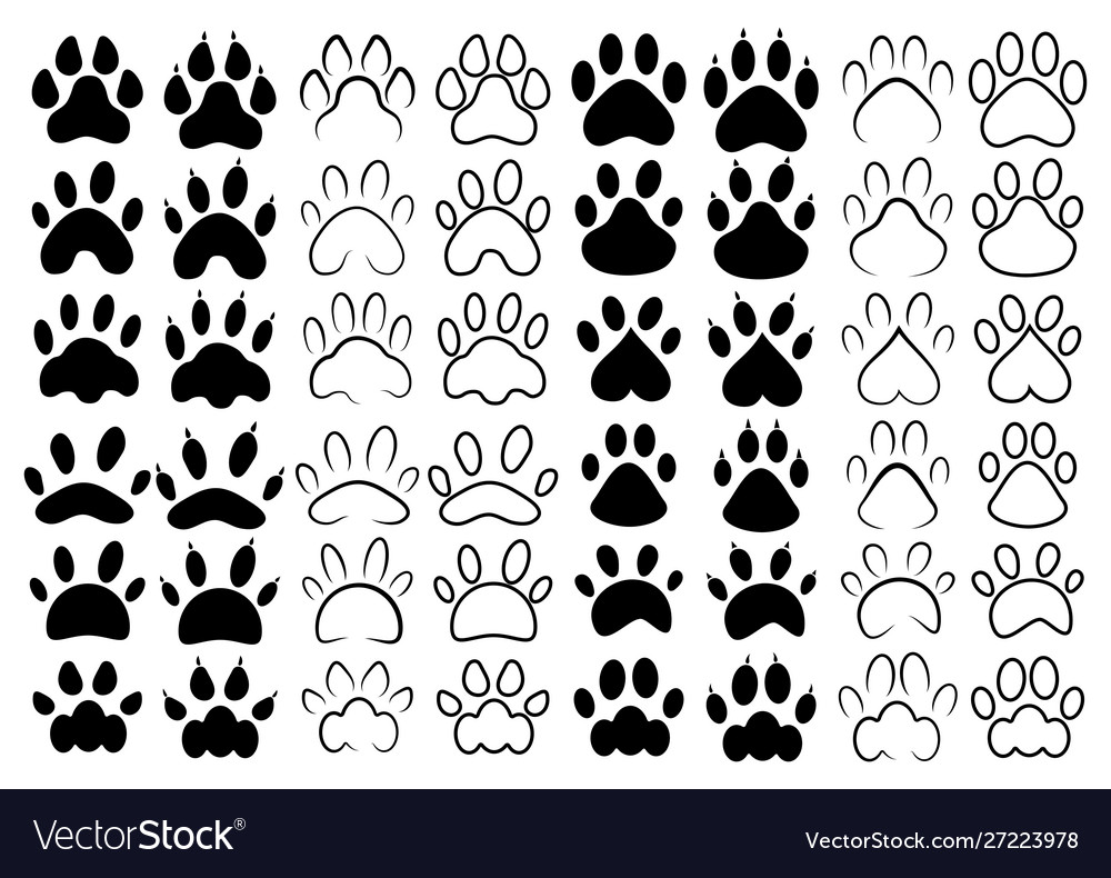 Set footprints pets collection paws dogs