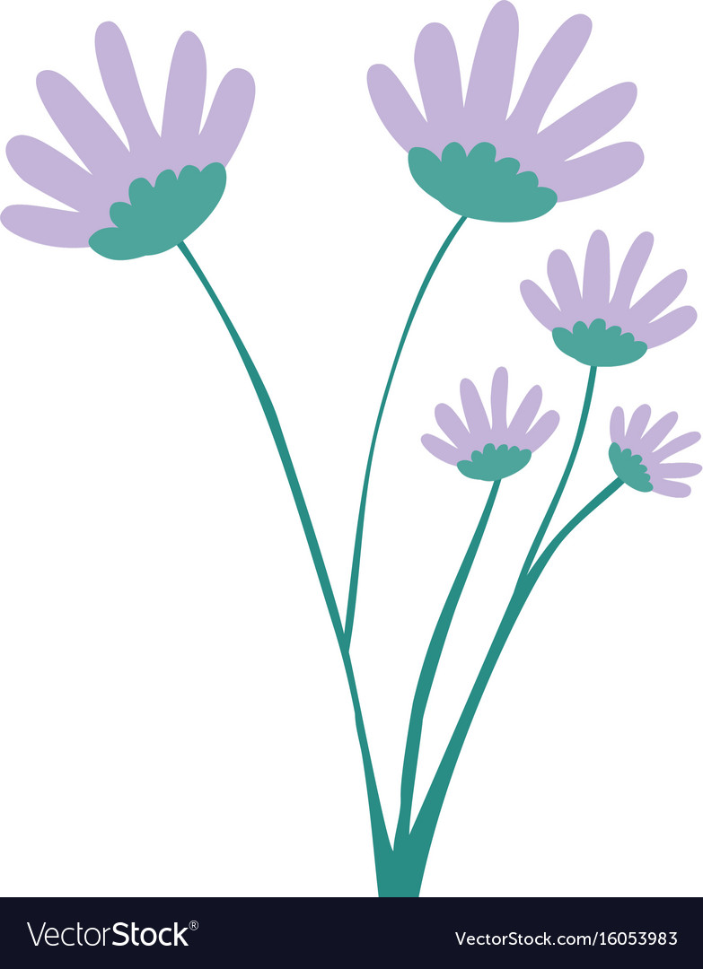 Hand Drawing Lilac Color Daisy Flower Bouquet With