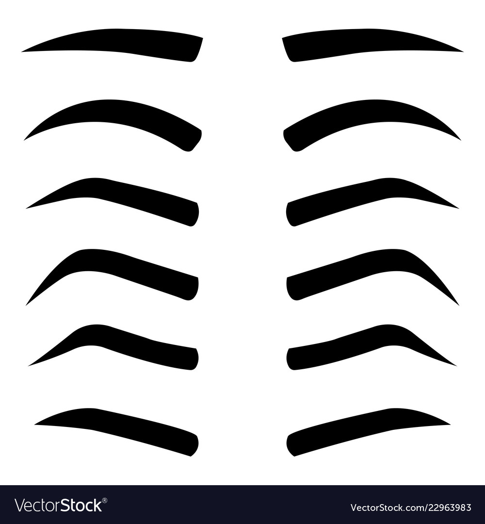 picture regarding Printable Eyebrow Stencil named Fixed of different styles eyebrows isolated