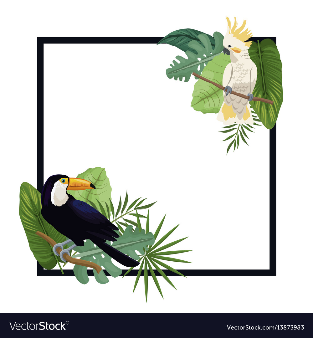 Tropical bird exotic palm poster vector image