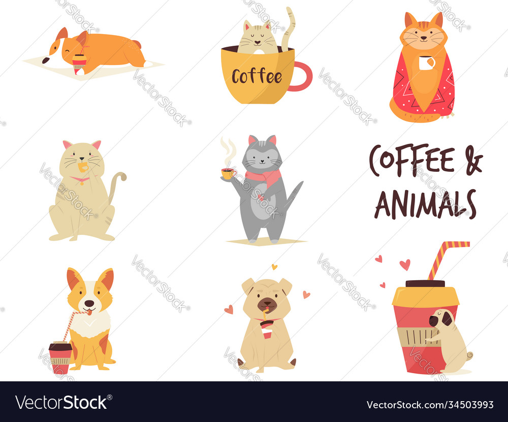 Set cats and dogs enjoying coffee