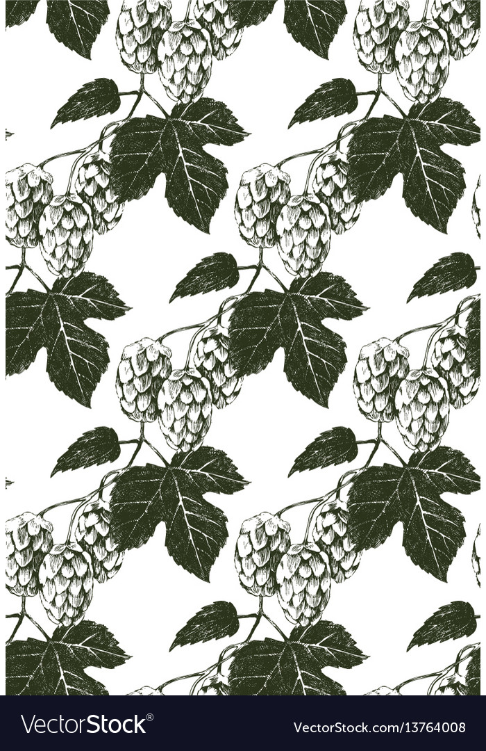 Seamless pattern with hand drawn hop