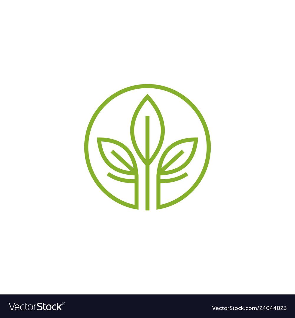 Leaf logo tea logo design