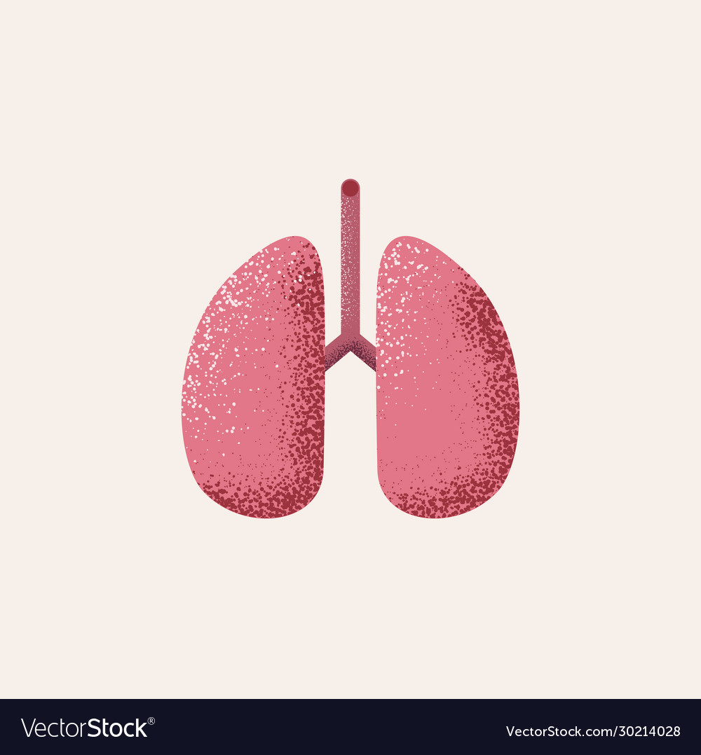 Lungs icon isolated on white background