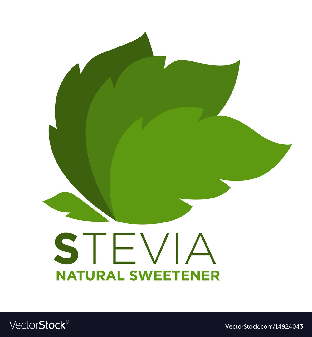 Stevia natural sweetener green leaf with vector image