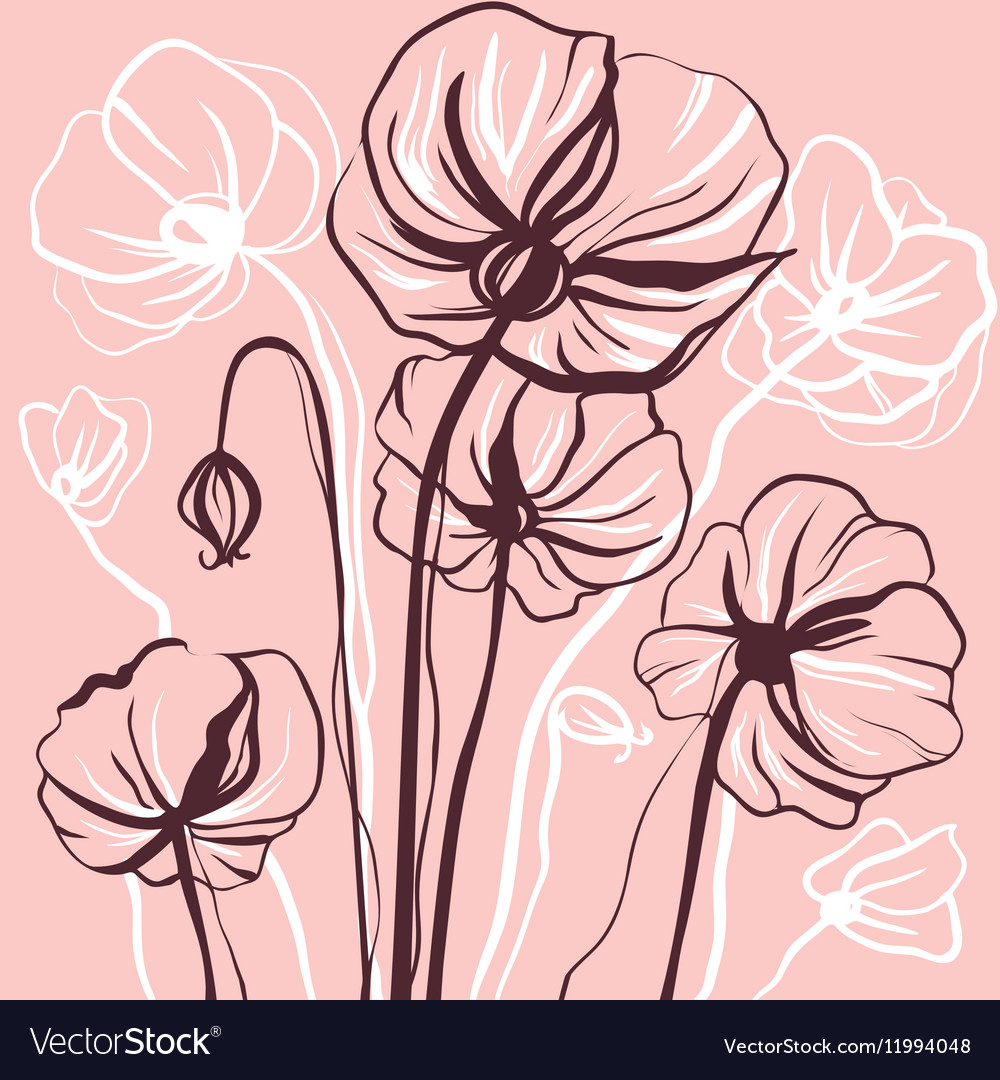 Decorative drawing flowers poppy vector image