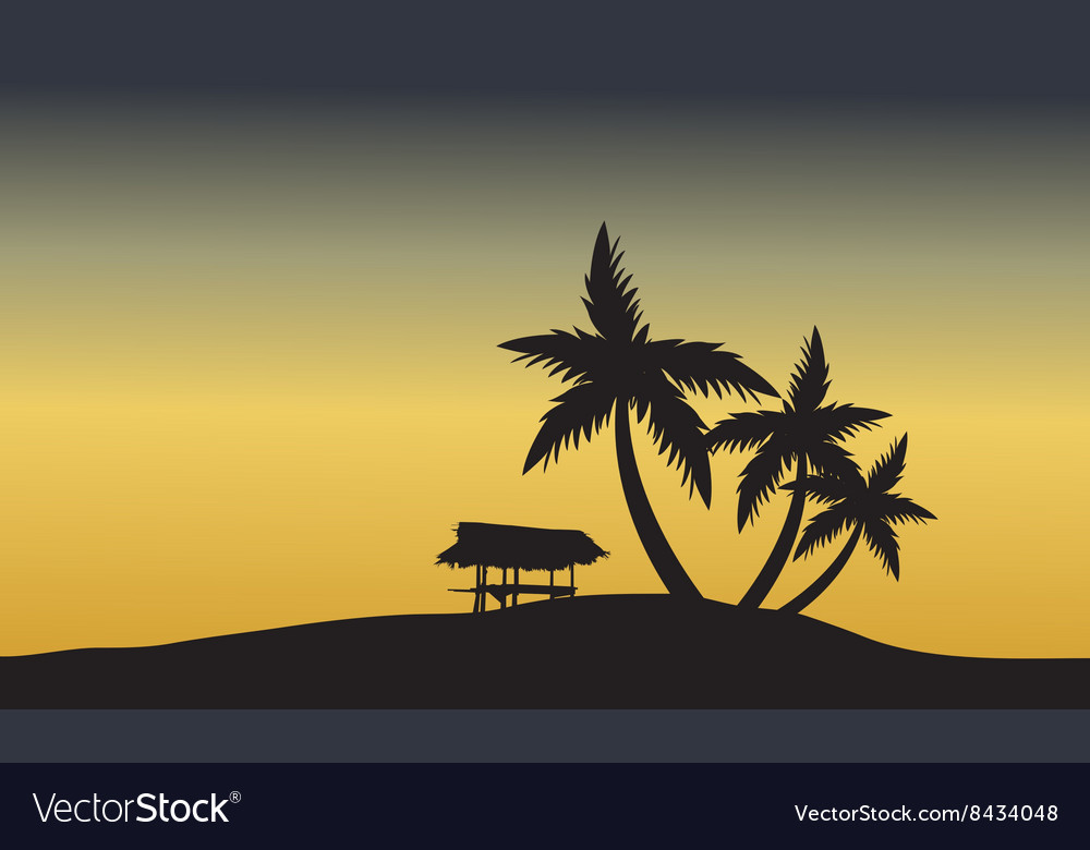 Palm trees sunset golden of silhouette