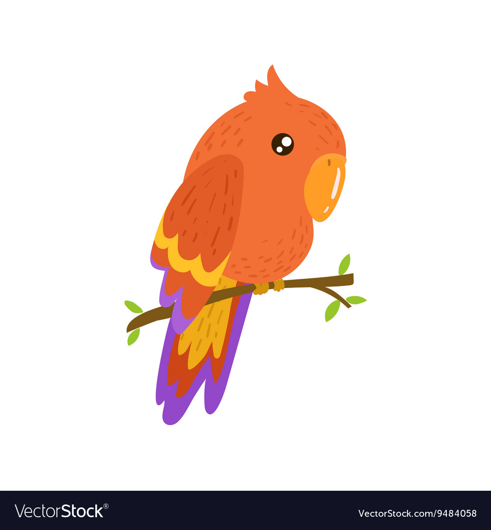 Red Macaw Realistic Childish