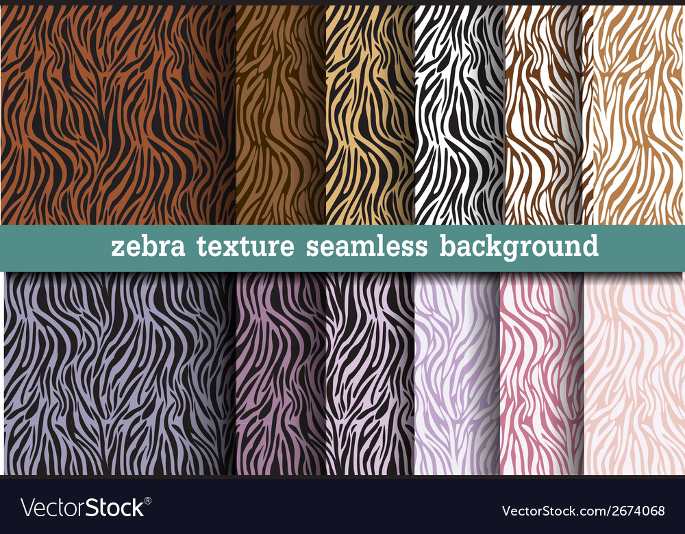 Image of: Pattern Vectorstock Animal Print Zebra Texture Seamless Background Vector Image