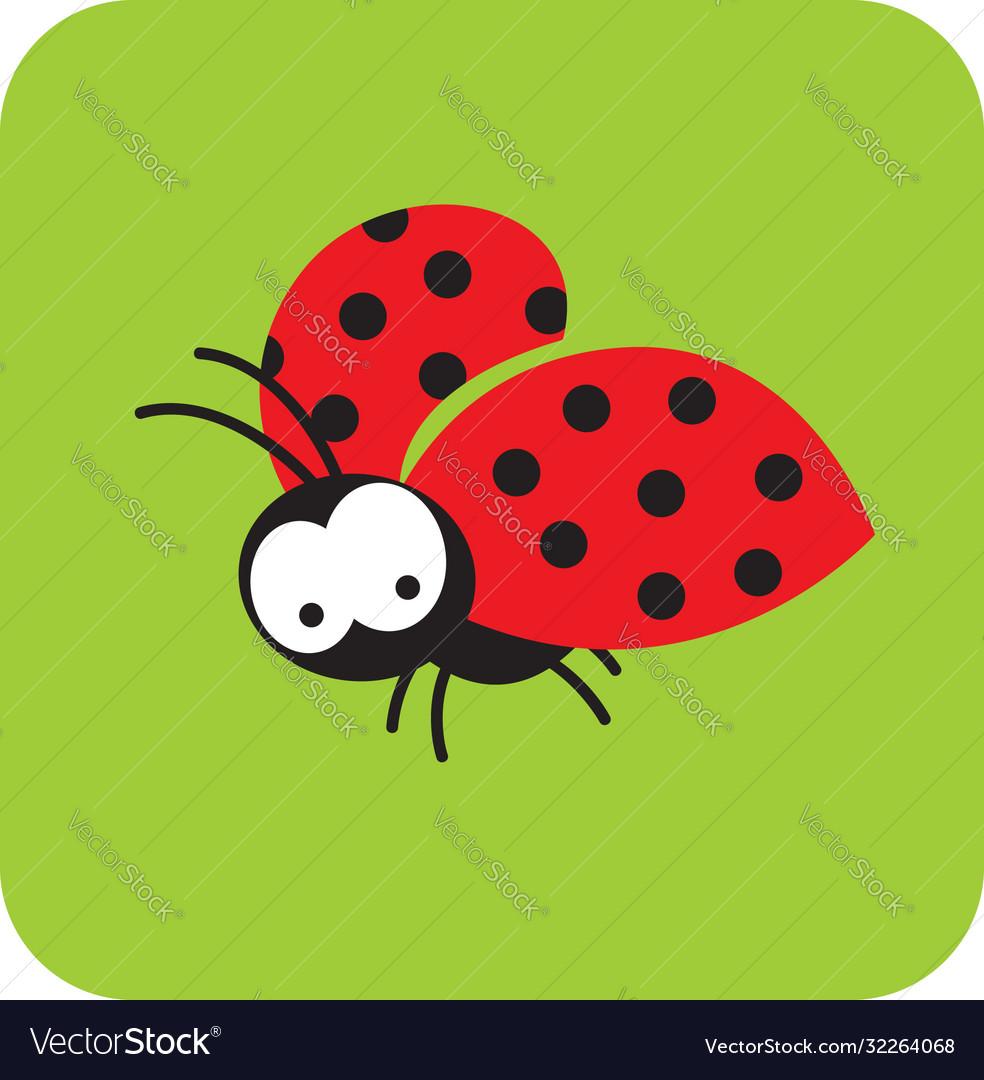 Beetle in flight