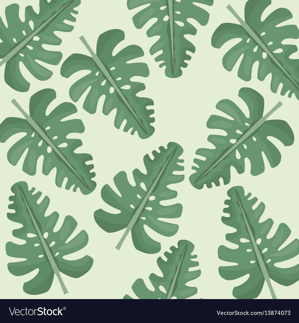 Monstera leaves jungle seamless pattern