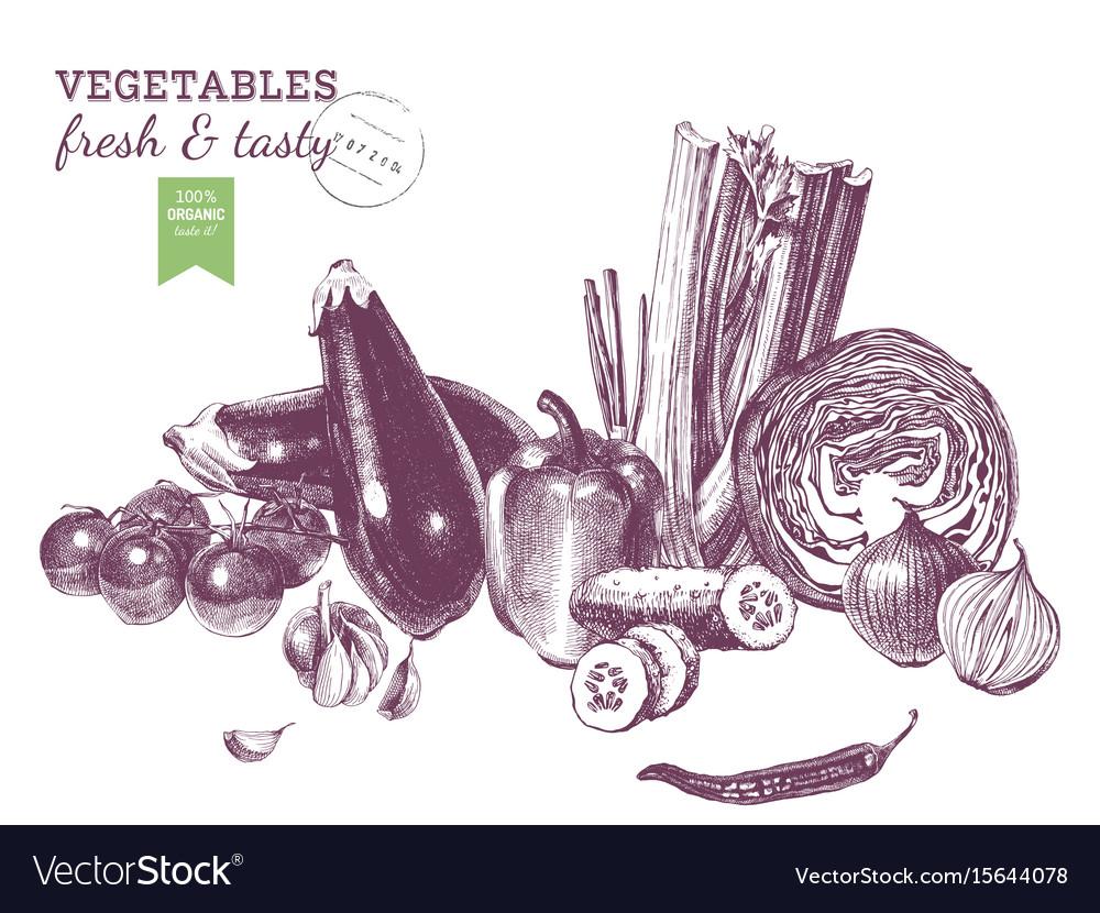 Hand drawn vegetables border