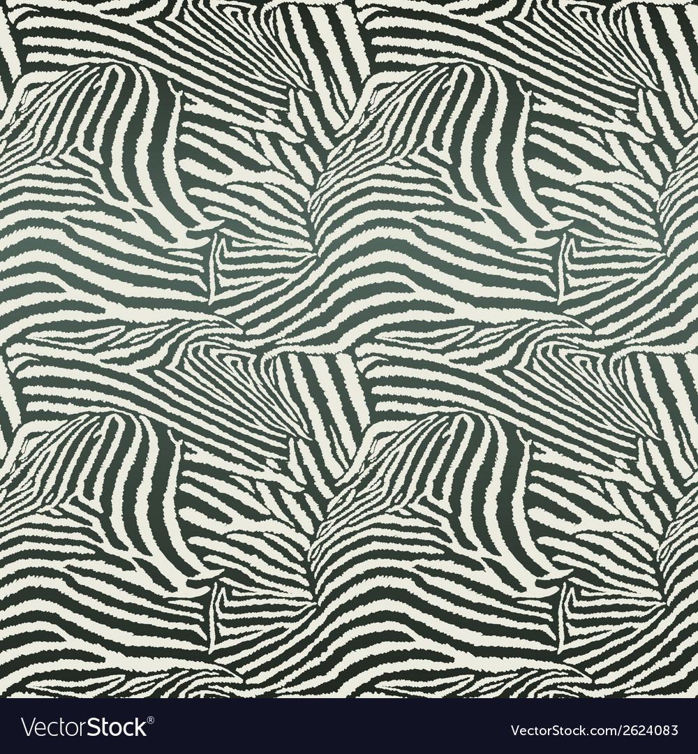 Animal zebra seamless background