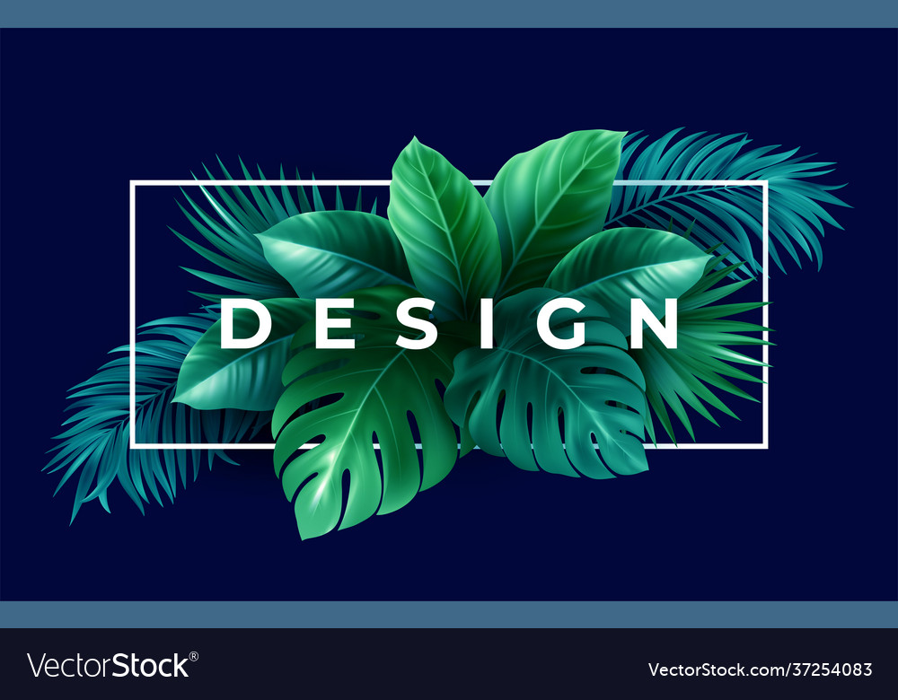 Summer tropical design for banner or flyer with