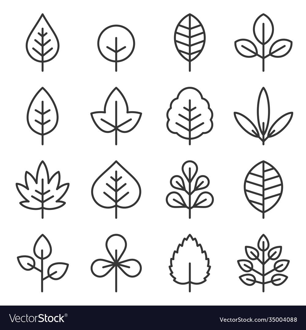 Leaf icons set on white background