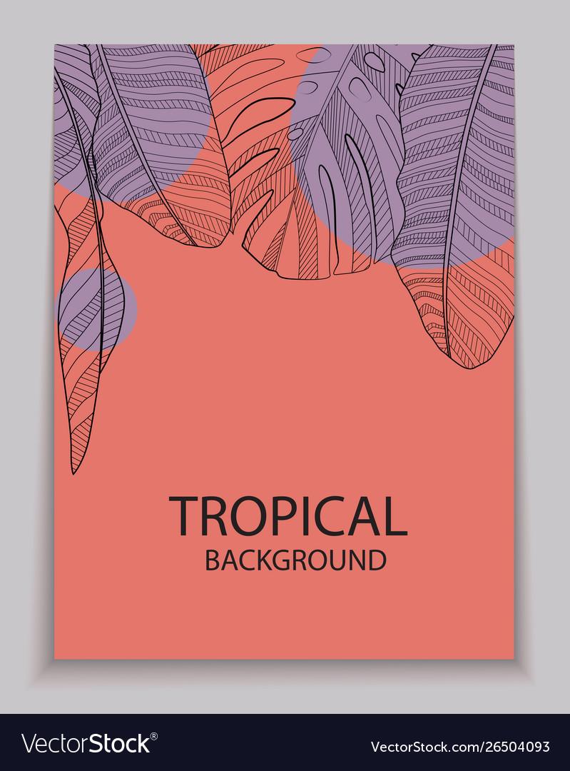 Abstract tropical banana and monstera palm leaves