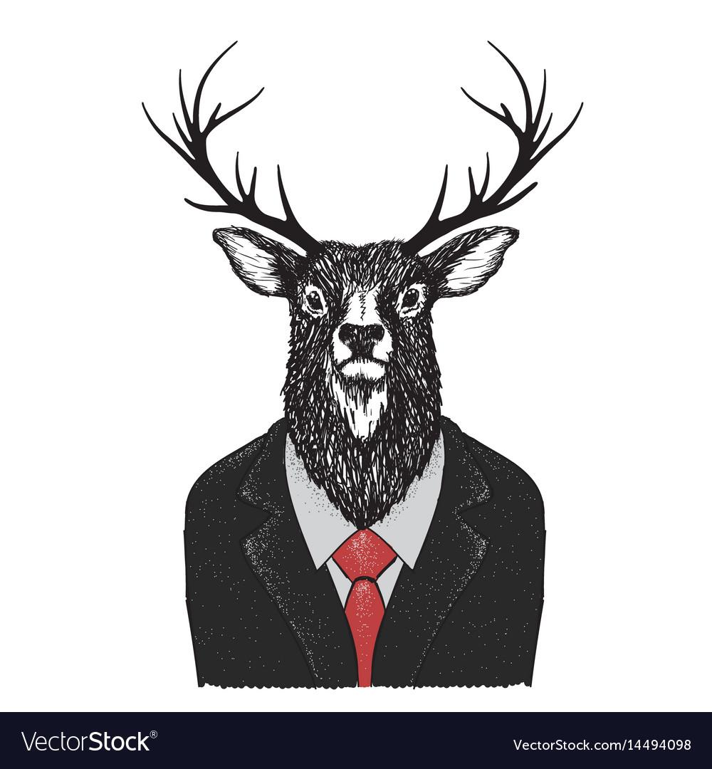 Serious deer dressed in jacket