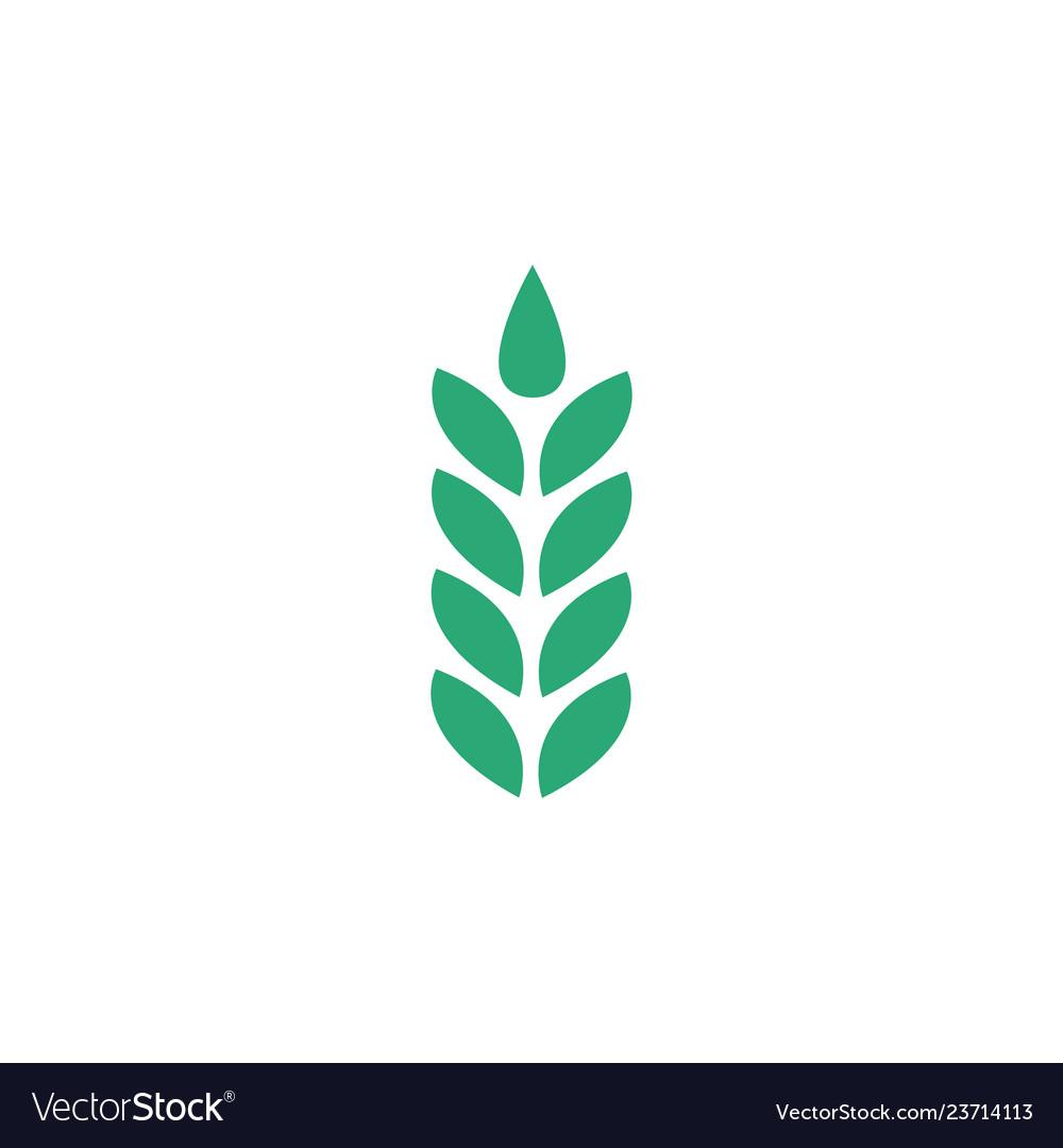 Wheat ear icon symbol logo isolated on white