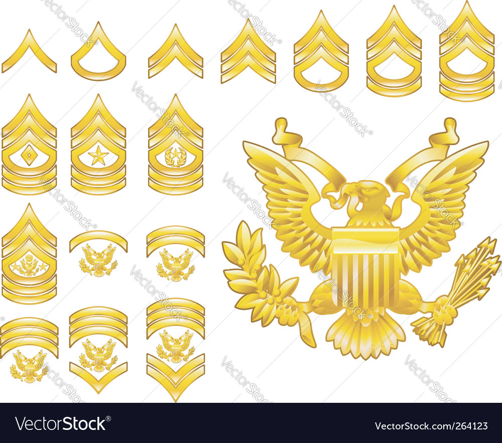 Army rank insignia icons vector image