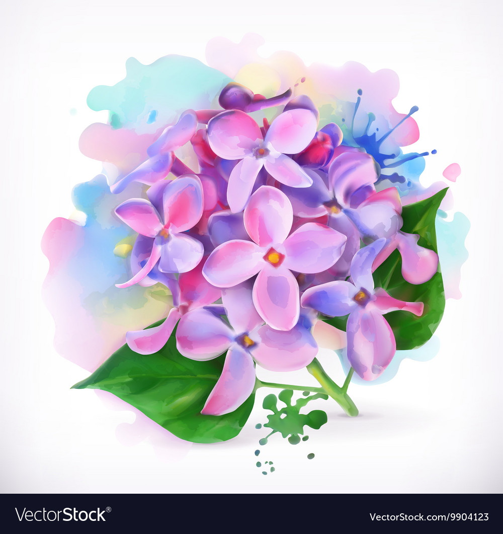 Lilac Flowers Watercolor Painting Mesh Royalty Free Vector