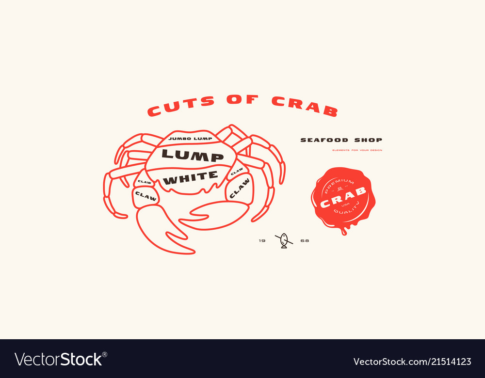 stock crab cuts diagram in thin line style vector 21514123 stock crab cuts diagram in thin line style vector image