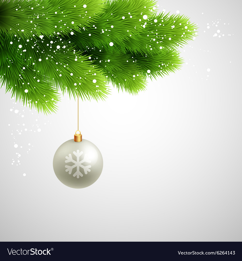 Green Pine branches with white ball