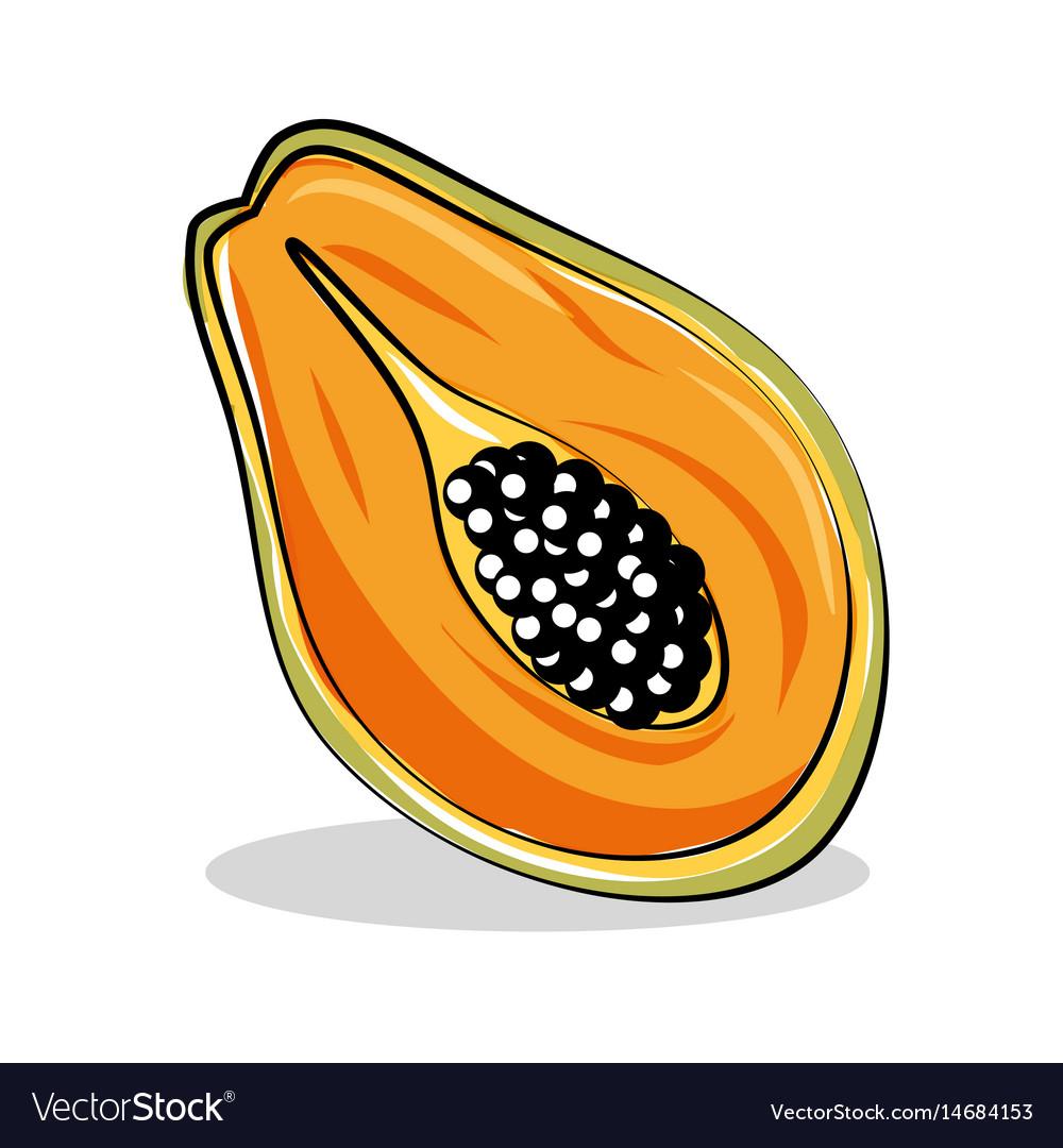 Papaya fresh and healthy fruit vector image