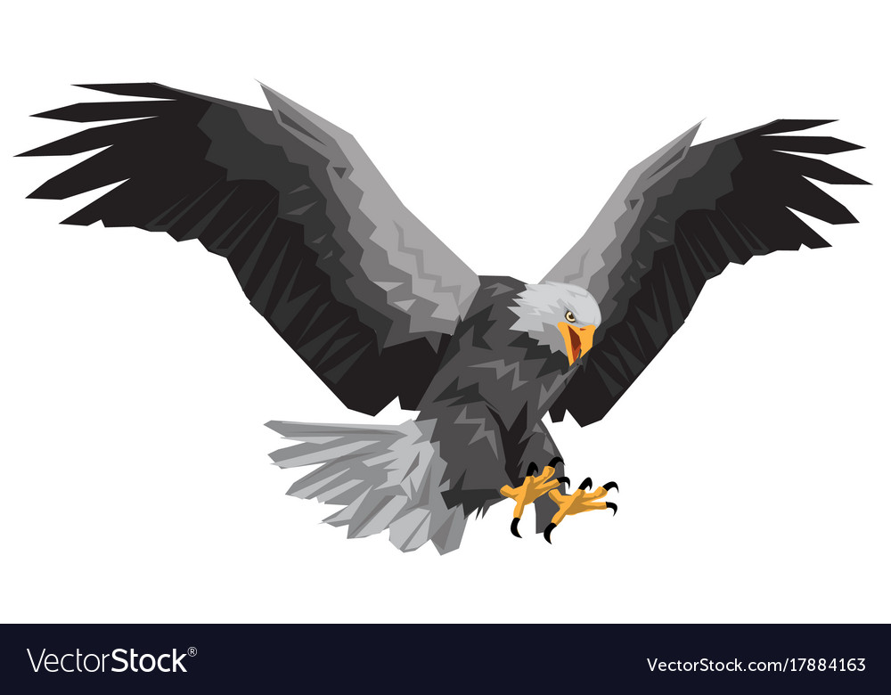 Bald eagle flying winged swoop polygon on white ba bald eagle flying winged swoop polygon on white ba vector image altavistaventures Image collections