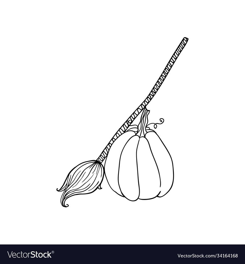 Broom and pumpkin halloween doodles isolated