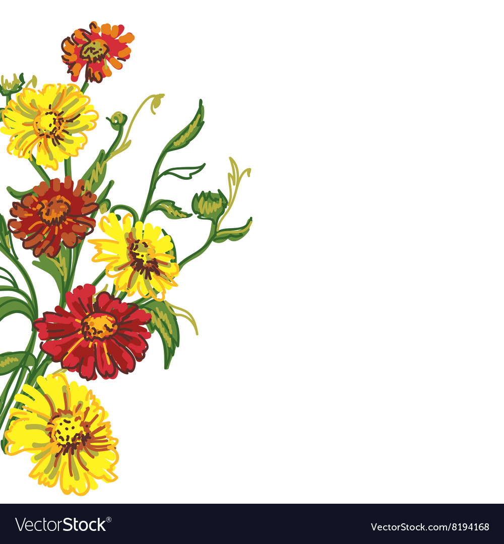 Drawing Wild Flowers Royalty Free Vector Image