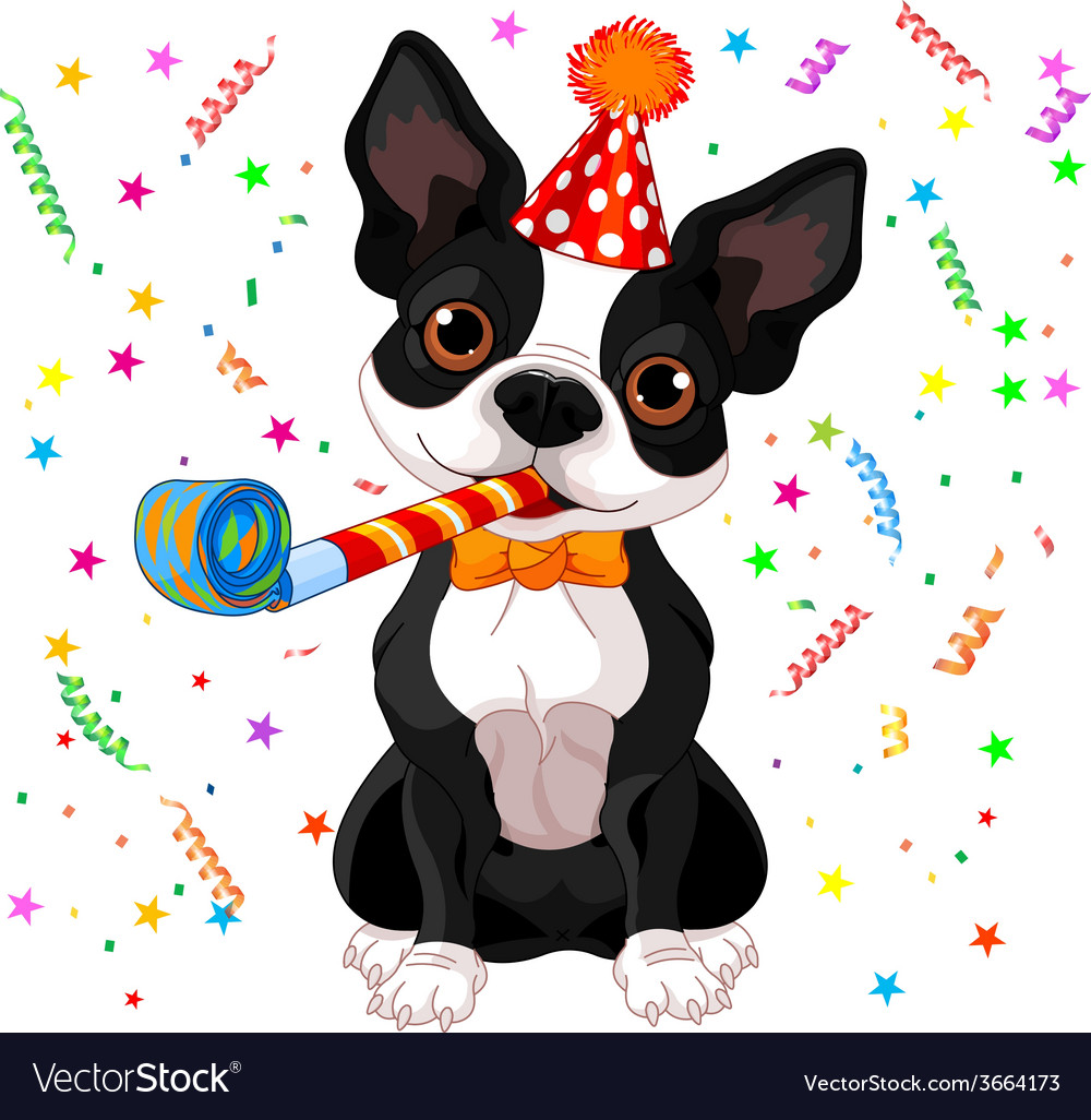 Boston terrier party Royalty Free Vector Image