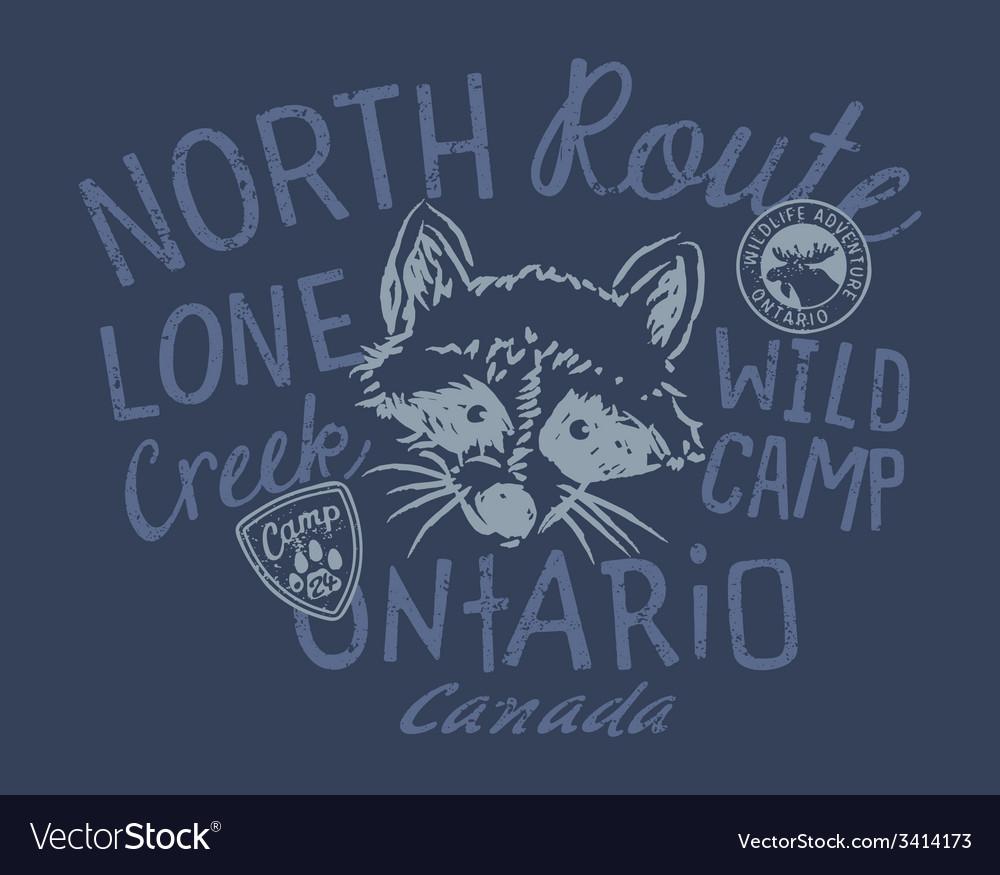 Raccoon wild camp