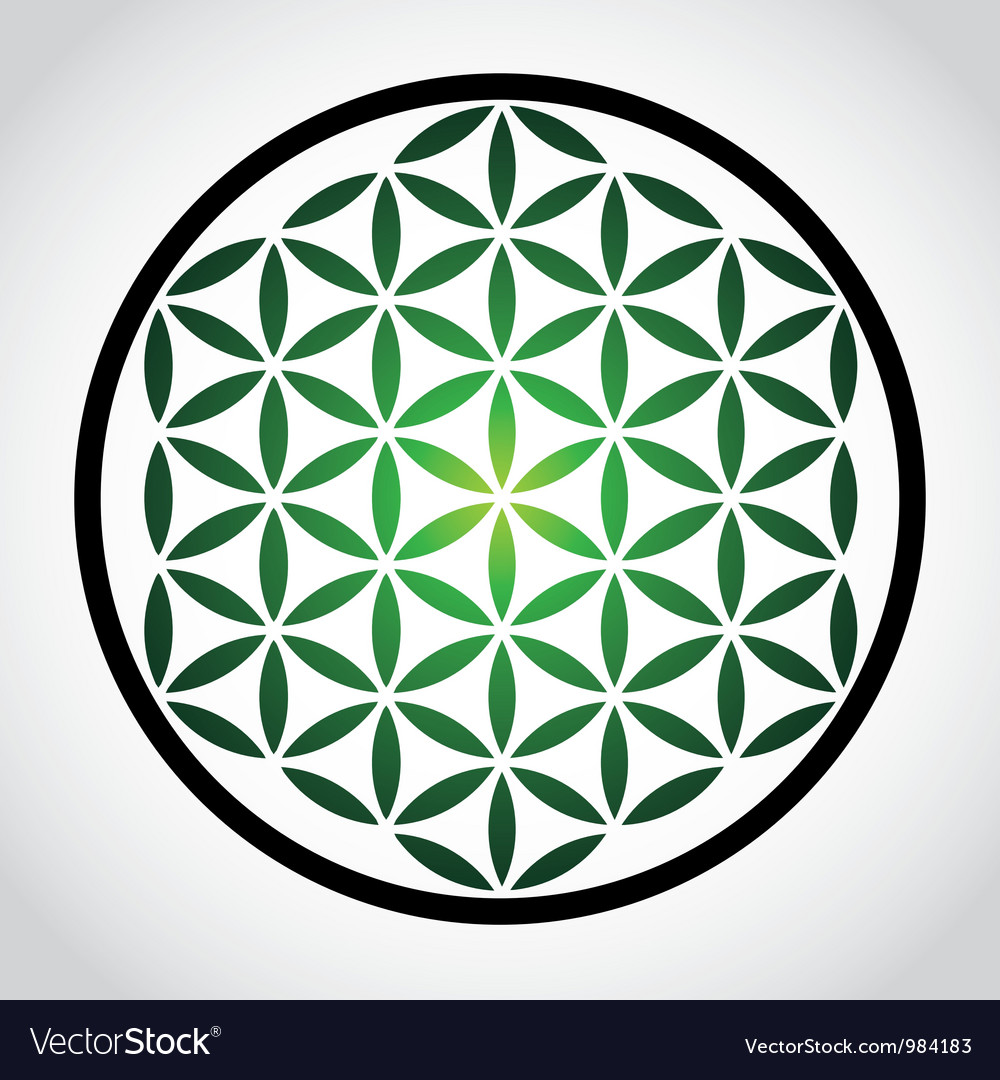 flower of life royalty free vector image vectorstock rh vectorstock com flower of life vector ai flower of life vector free