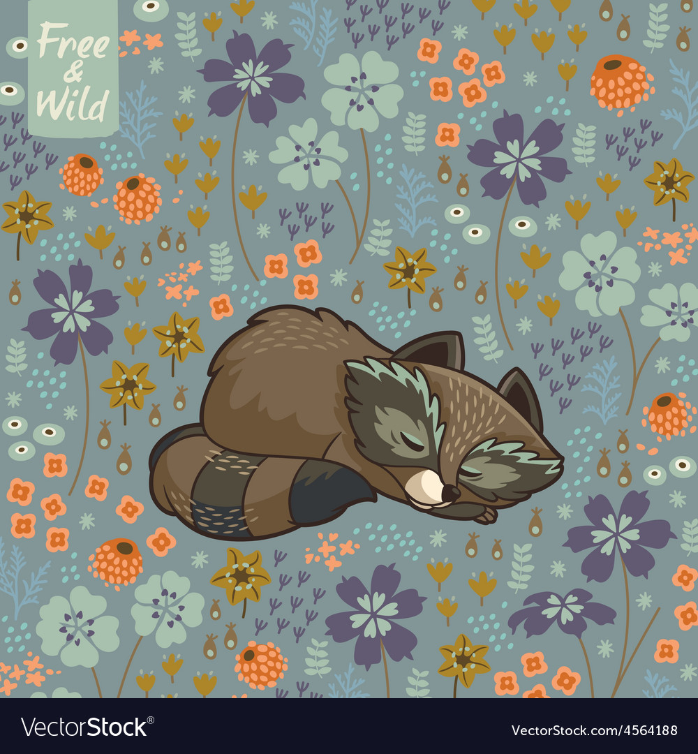 Funny little raccoon sleeping in a meadow