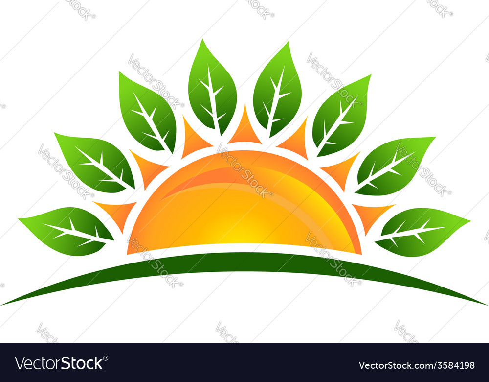 Sun with leaves image vector image
