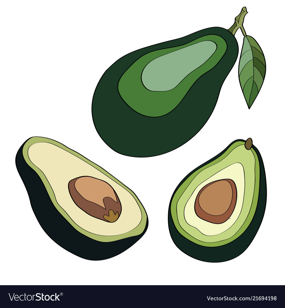 Whole avocado with leaf and half with seed