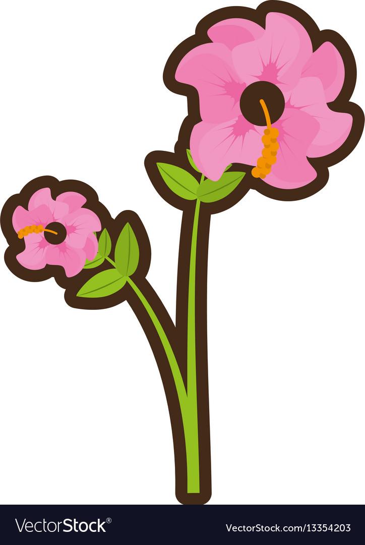 cartoon geranium flower season spring royalty free vector rh vectorstock com spring vector background spring vector logo