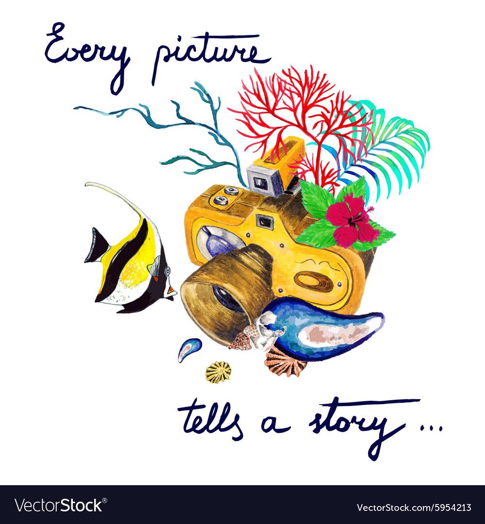 Camera and fish vector image