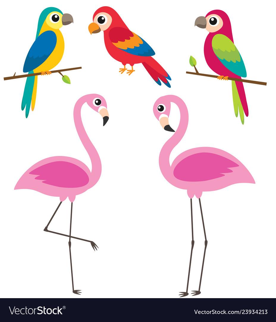 Cute cartoon parrots and flamingos