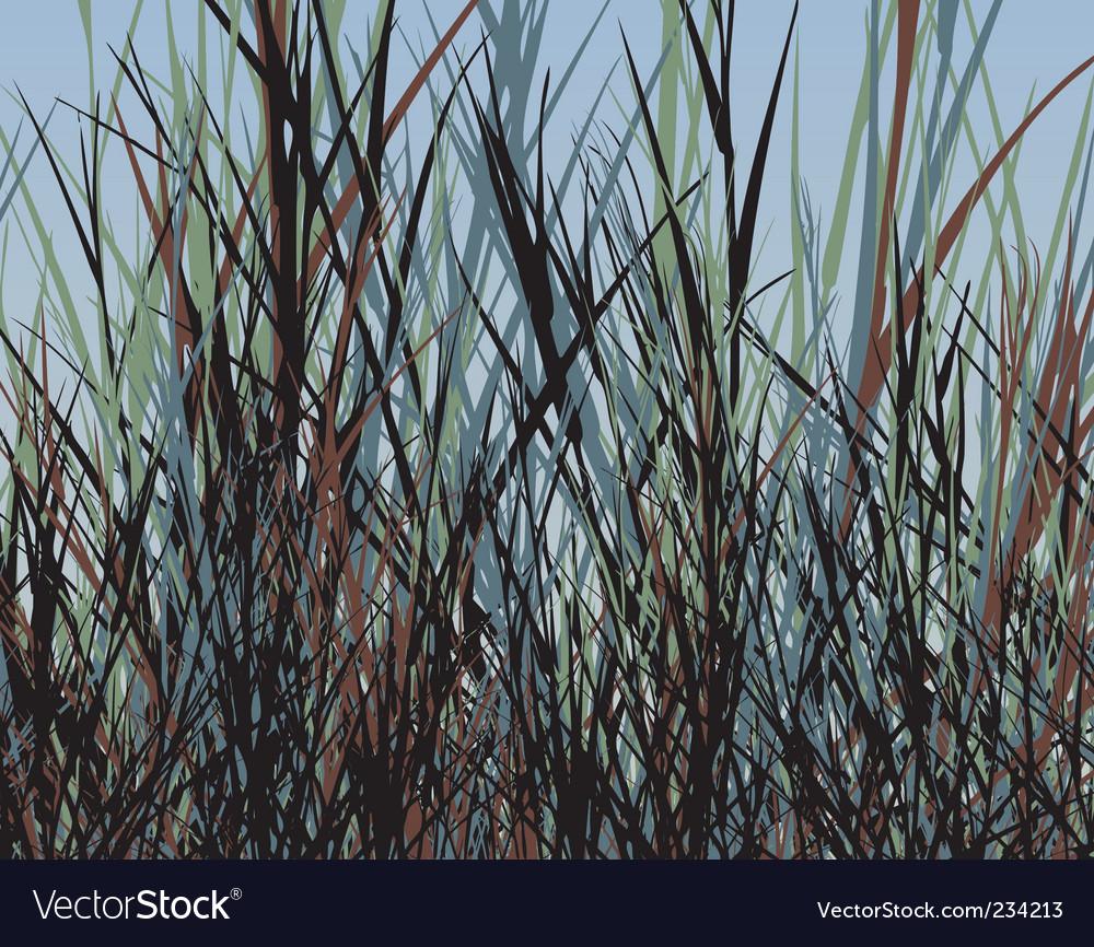 Grass jungle