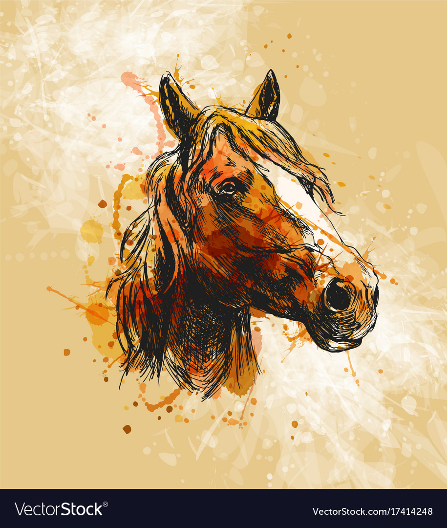 Colored Hand Sketch Horse Head Royalty Free Vector Image