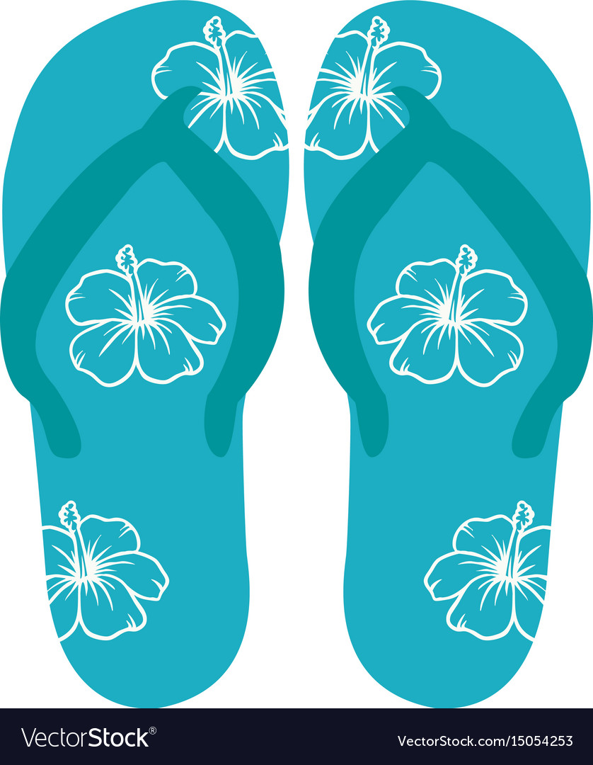 Beach flip-flops vector image