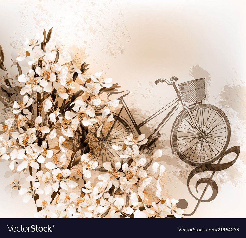 Floral retro background with flowers and bike vector