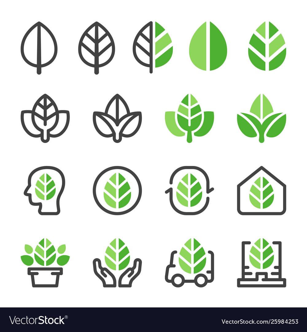 Green leaf icon set