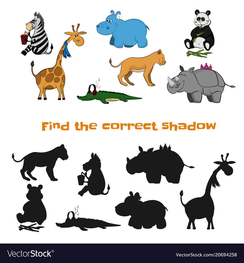 Find the correct shadow kids game zoo animals