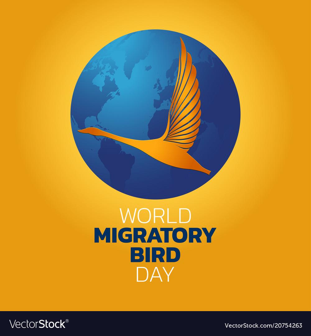 World migratory bird day Royalty Free Vector Image