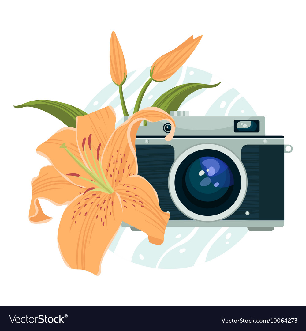 Vintage camera and beautiful lily