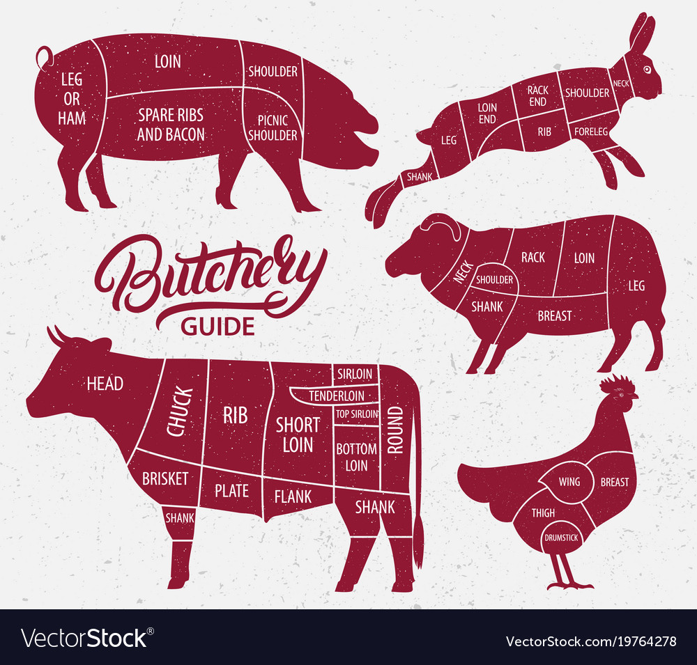 Animal farm set vector image