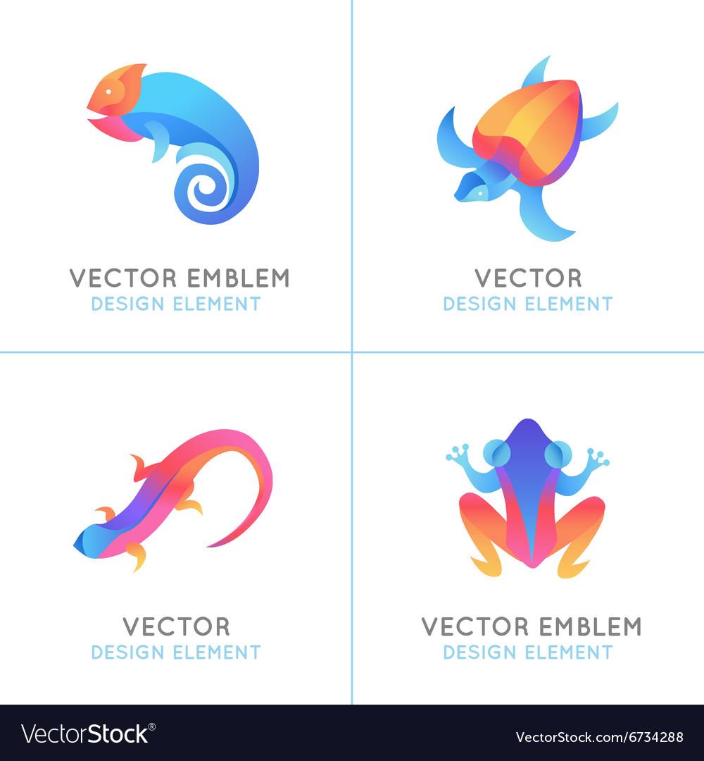 Set of logo design templates in bright gradient